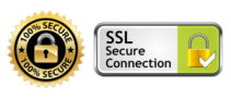 APS-SSL-Secure-Connection-300x128-1